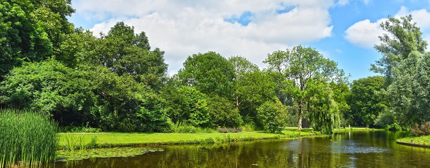 Mitmacht-Tag von GNW in Wiesbaden. Auf dem Bild ist ein Park mit Wasser zu sehen und blauem Himmel.
