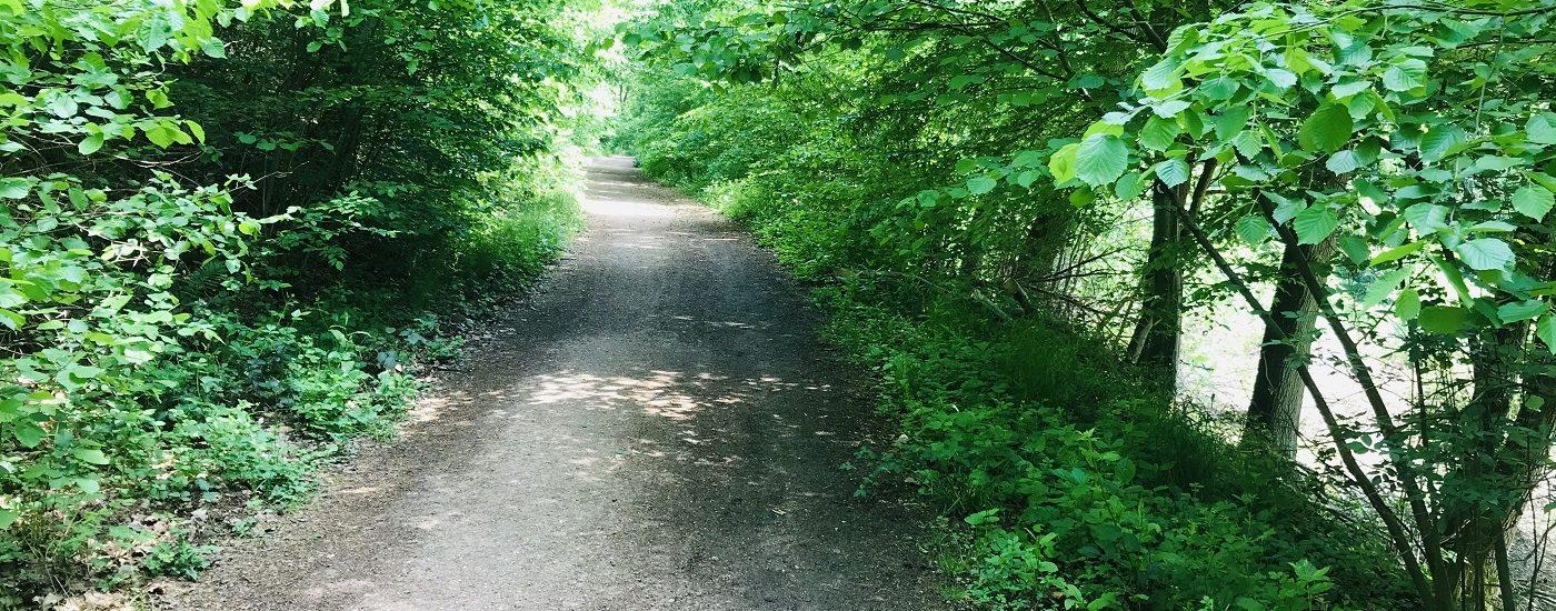 Leerlauf im Kopf, das Highlight in jedem Sommer, Rüdesheim, Niederwald, Jagdschloss