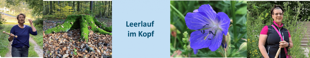 Leerlauf im Kopf im Osteinschen Park im Weltkulturerbe Rüdesheim